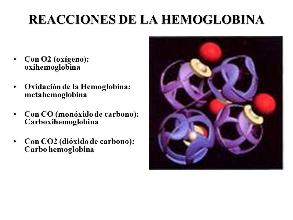 REACCIONES DE LA HEMOGLOBINA