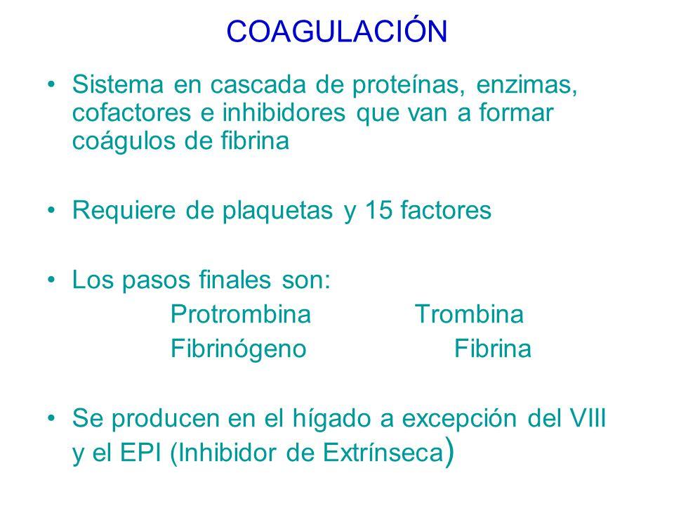 COAGULACIÓN Sistema en cascada de proteínas, enzimas, cofactores e inhibidores que van a formar coágulos de fibrina.
