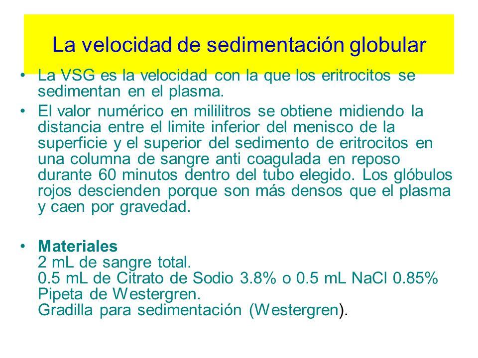 La velocidad de sedimentación globular