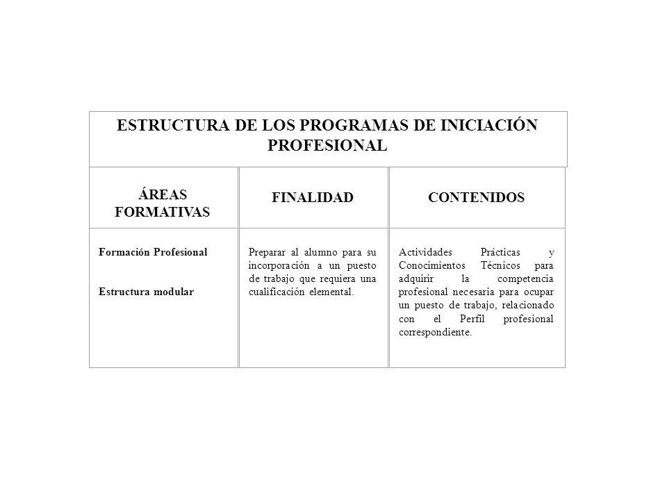 ESTRUCTURA DE LOS PROGRAMAS DE INICIACIÓN PROFESIONAL
