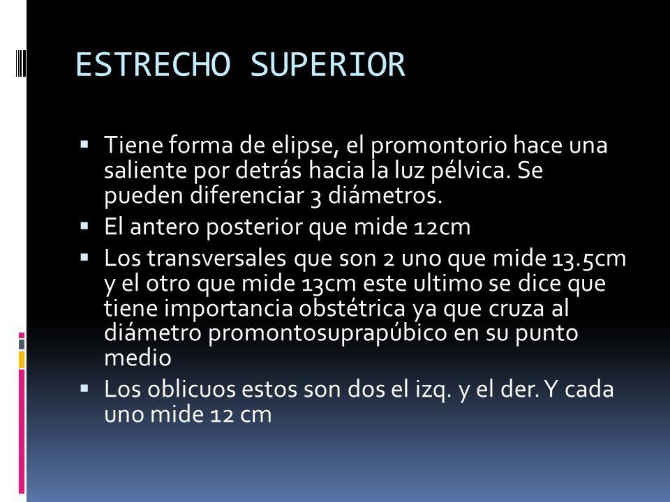 ESTRECHO SUPERIOR Tiene forma de elipse, el promontorio hace una saliente por detrás hacia la luz pélvica. Se pueden diferenciar 3 diámetros.