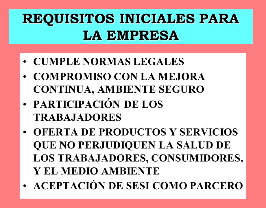 REQUISITOS INICIALES PARA LA EMPRESA