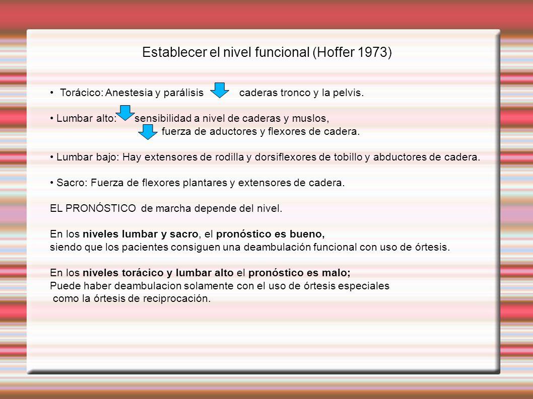 Establecer el nivel funcional (Hoffer 1973)