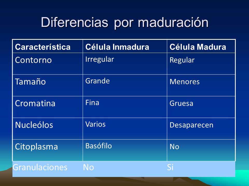 Diferencias por maduración