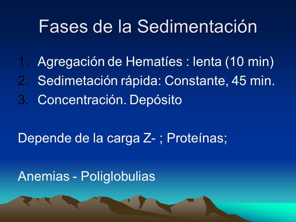 Fases de la Sedimentación