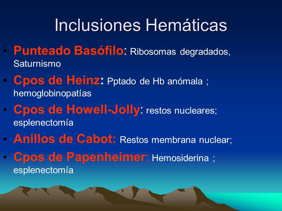 Inclusiones Hemáticas