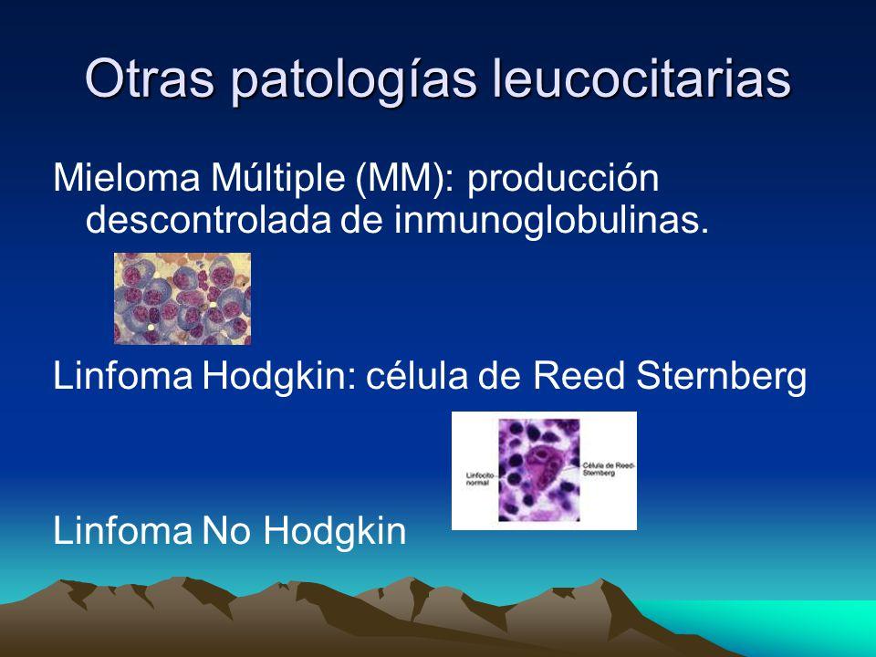 Otras patologías leucocitarias