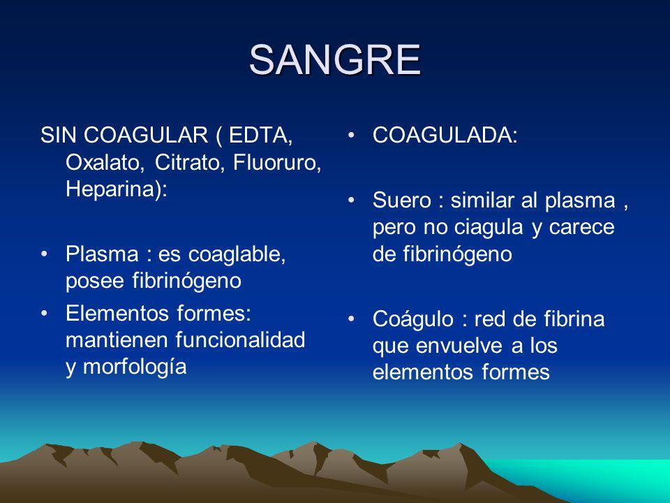 SANGRE SIN COAGULAR ( EDTA, Oxalato, Citrato, Fluoruro, Heparina):