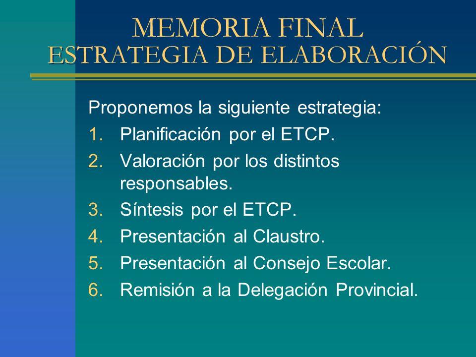 MEMORIA FINAL ESTRATEGIA DE ELABORACIÓN