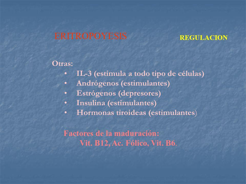 ERITROPOYESIS Otras: IL-3 (estimula a todo tipo de células)