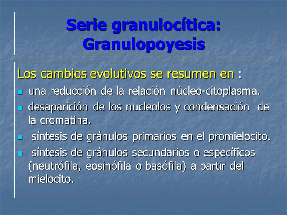 Serie granulocítica: Granulopoyesis