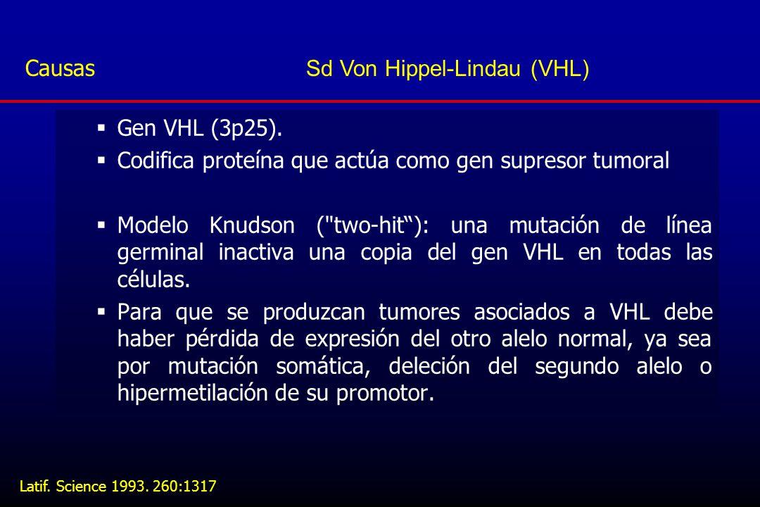Causas Sd Von Hippel-Lindau (VHL)