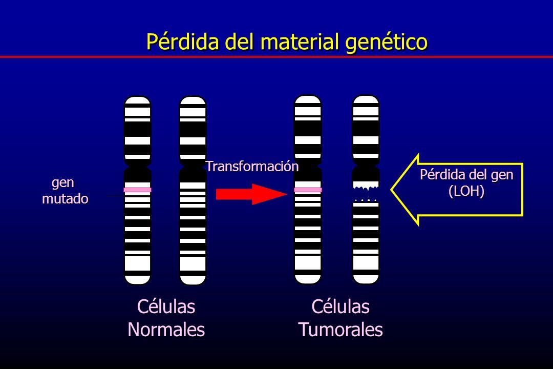 Pérdida del material genético