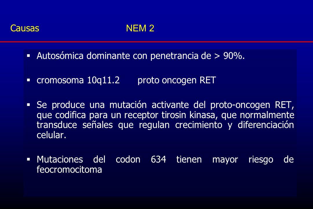 Causas NEM 2 Autosómica dominante con penetrancia de > 90%. cromosoma 10q11.2 proto oncogen RET.