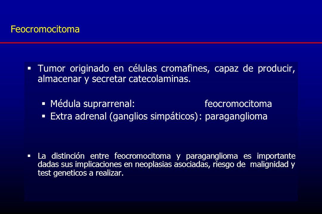Médula suprarrenal: feocromocitoma