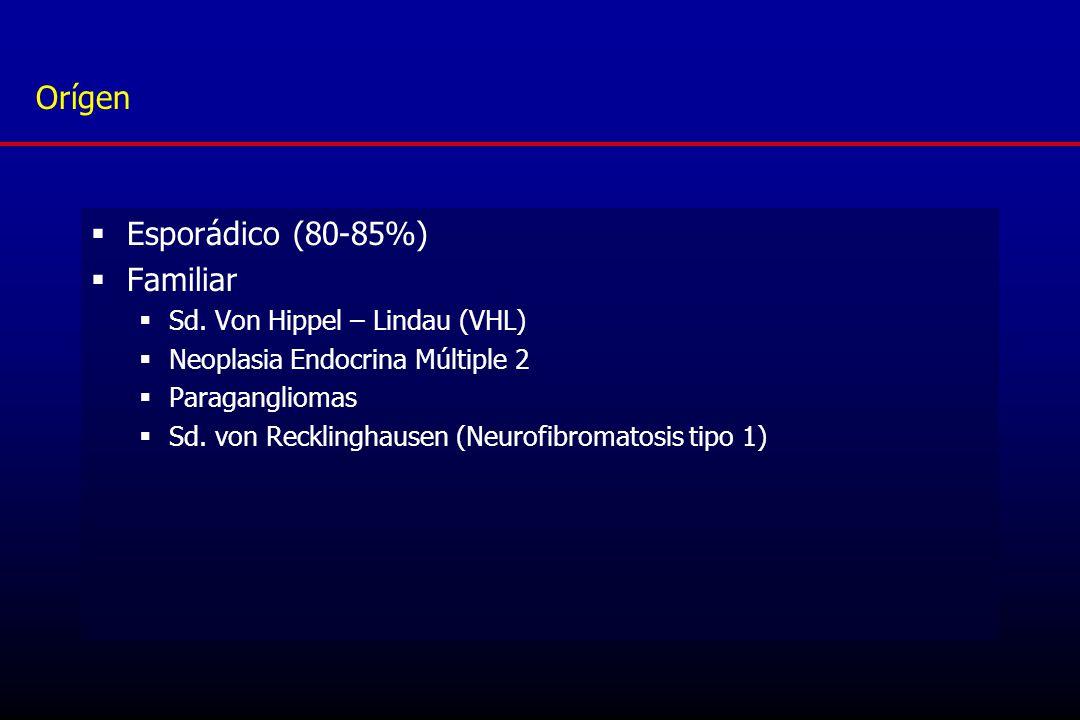 Orígen Esporádico (80-85%) Familiar Sd. Von Hippel – Lindau (VHL)