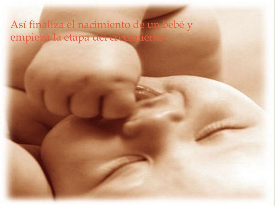Así finaliza el nacimiento de un bebé y empieza la etapa del crecimiento.
