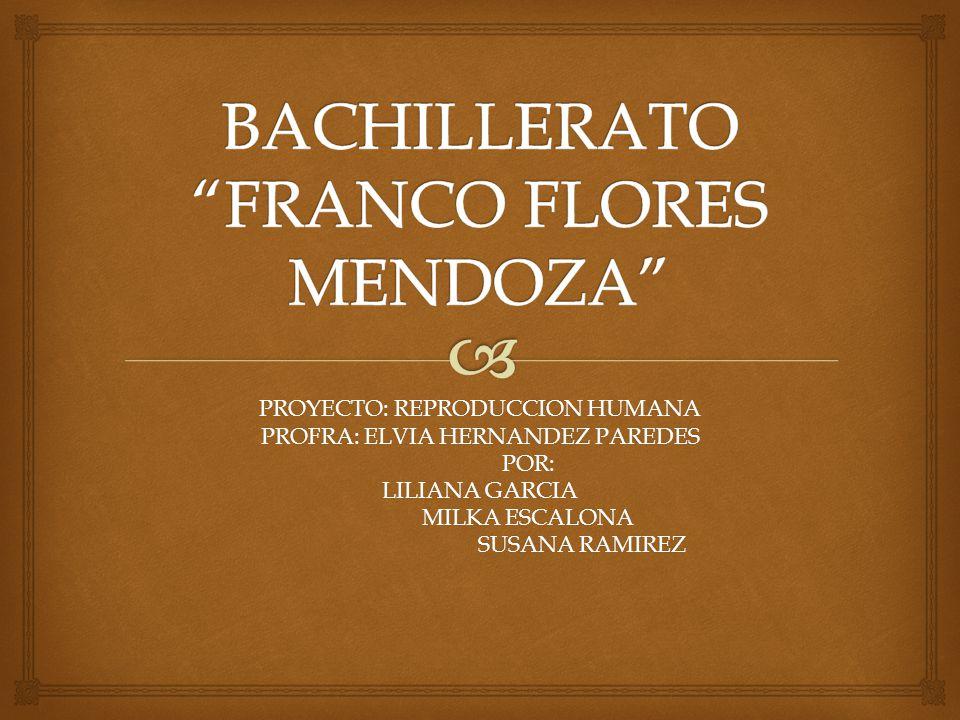 BACHILLERATO FRANCO FLORES MENDOZA