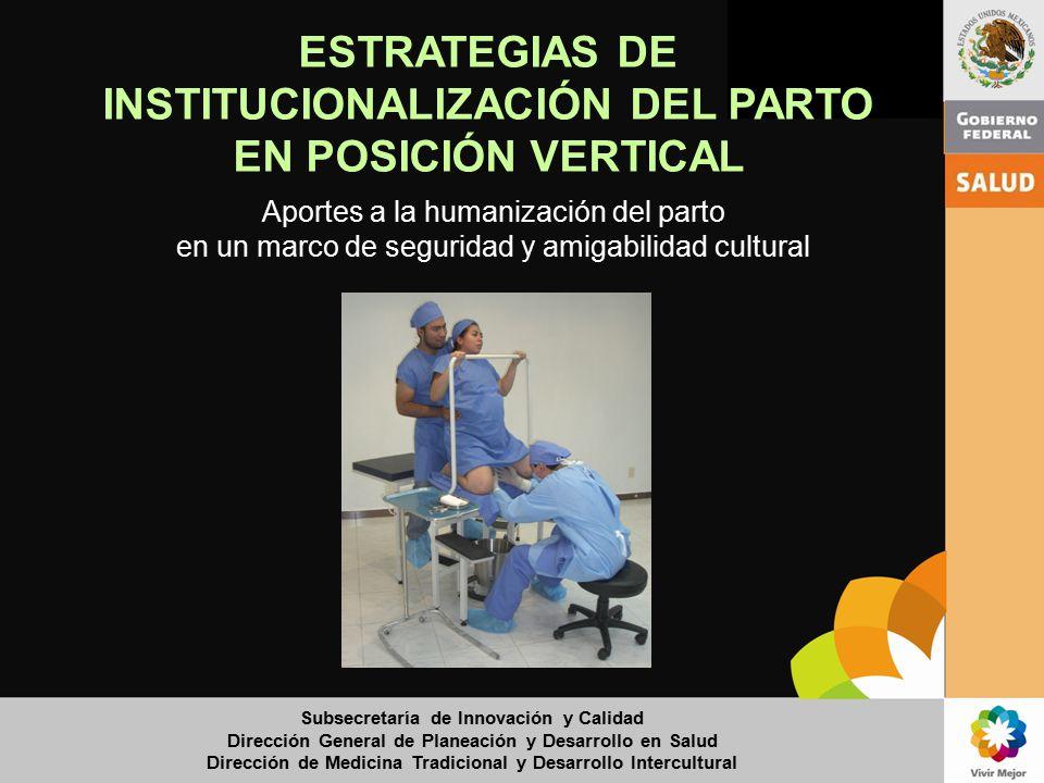 ESTRATEGIAS DE INSTITUCIONALIZACIÓN DEL PARTO EN POSICIÓN VERTICAL