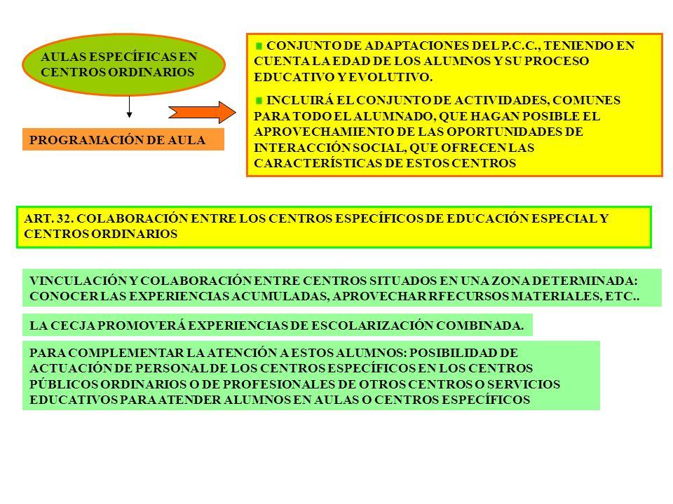 CONJUNTO DE ADAPTACIONES DEL P. C. C