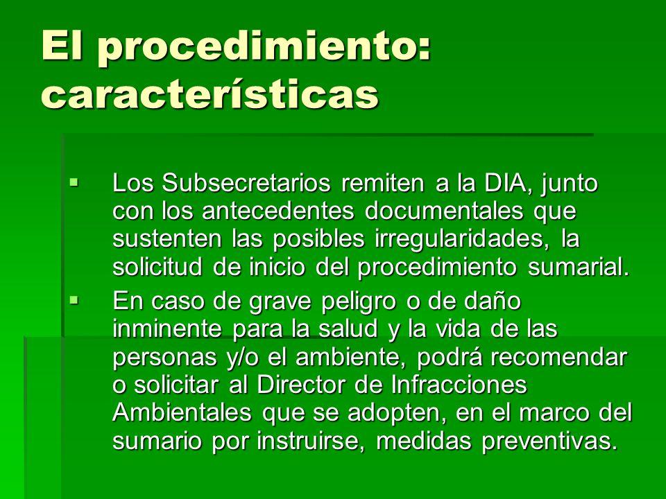 El procedimiento: características