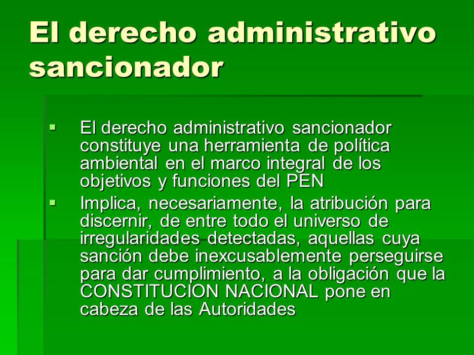 El derecho administrativo sancionador
