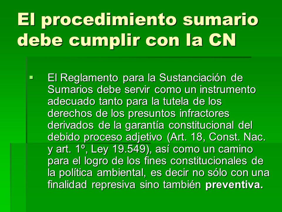 El procedimiento sumario debe cumplir con la CN