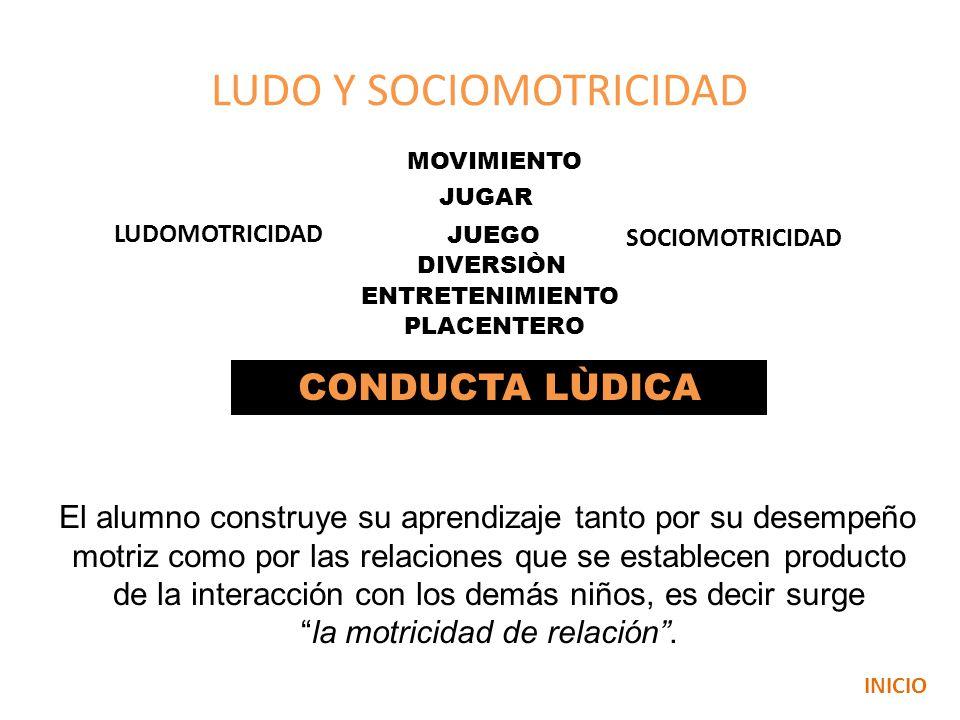 LUDO Y SOCIOMOTRICIDAD