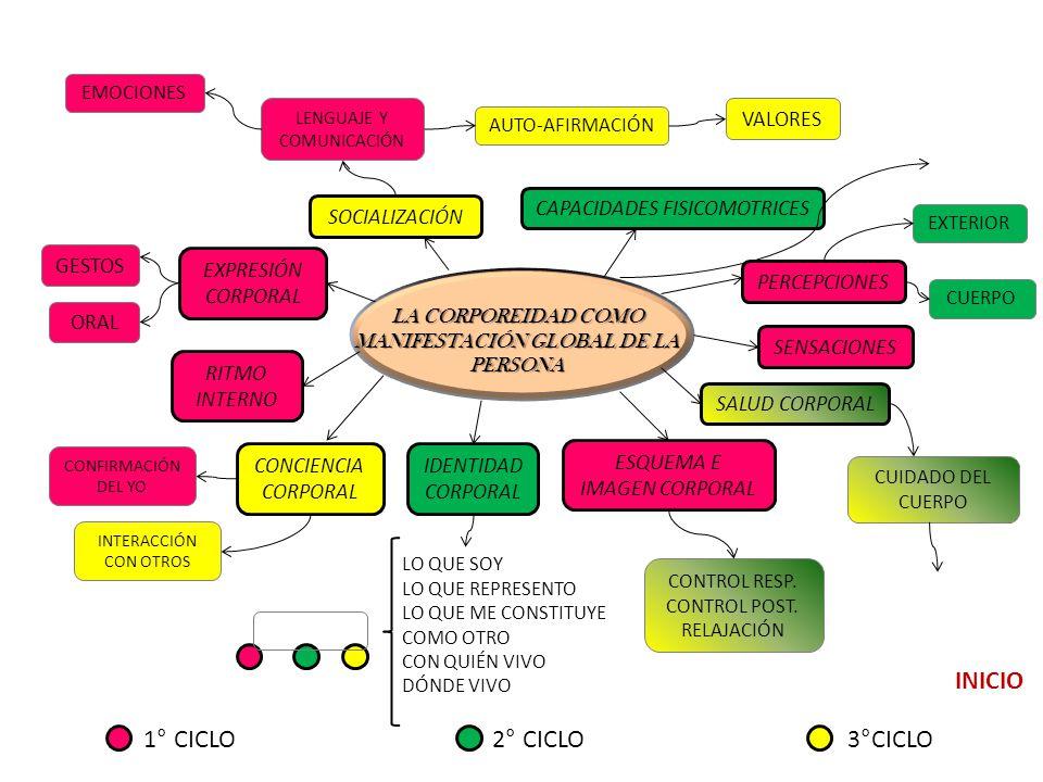 INICIO 1° CICLO 2° CICLO 3°CICLO VALORES CAPACIDADES FISICOMOTRICES