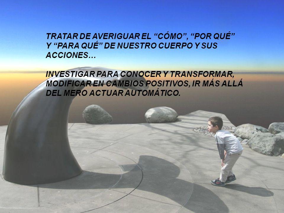 TRATAR DE AVERIGUAR EL CÓMO , POR QUÉ