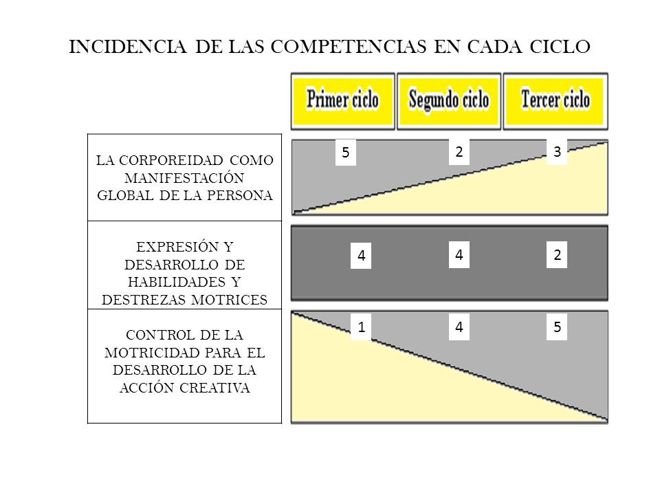 INCIDENCIA DE LAS COMPETENCIAS EN CADA CICLO