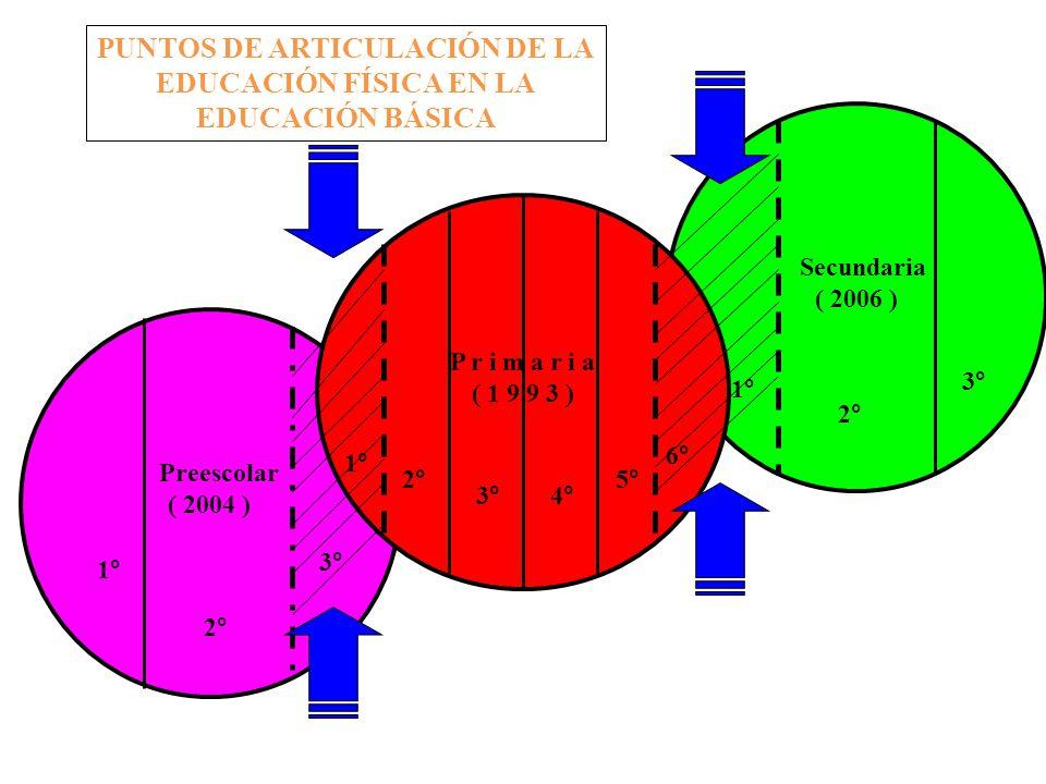 PUNTOS DE ARTICULACIÓN DE LA EDUCACIÓN FÍSICA EN LA EDUCACIÓN BÁSICA