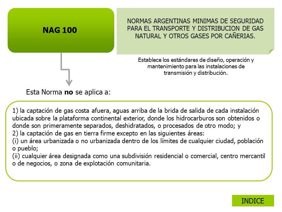 NAG 100 Esta Norma no se aplica a: INDICE