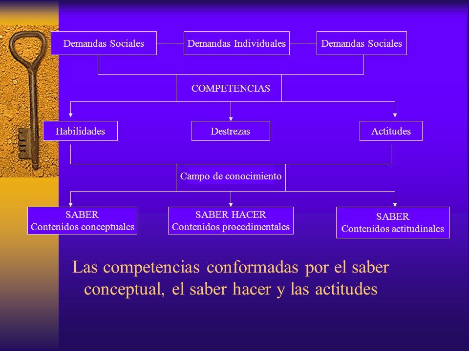 Demandas Sociales Demandas Individuales. Demandas Sociales. COMPETENCIAS. Habilidades. Destrezas.