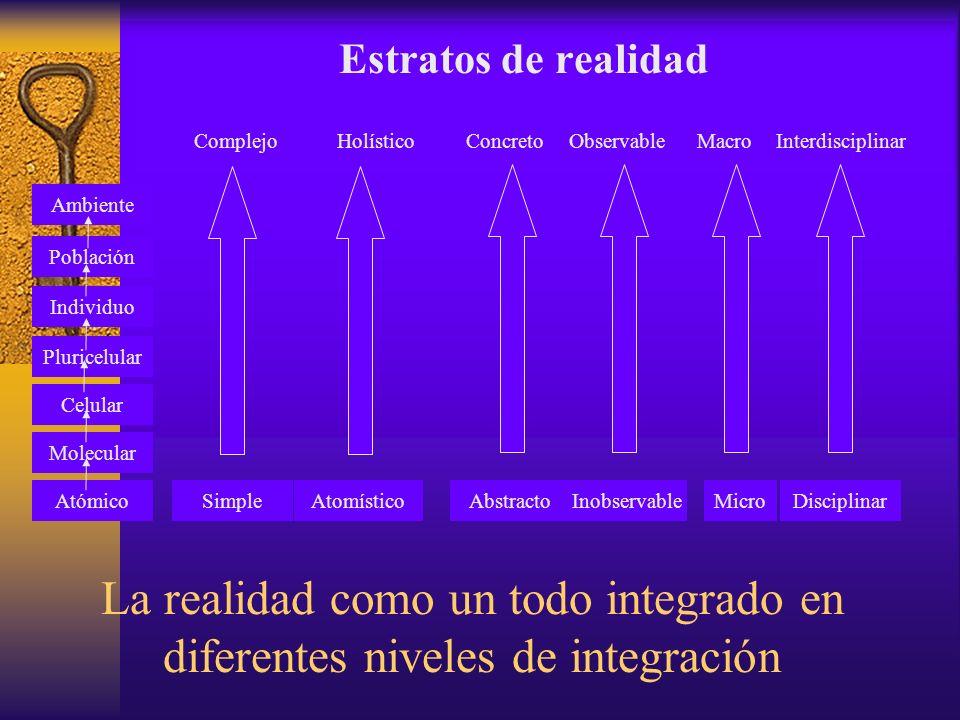 Estratos de realidad Complejo. Holístico. Concreto. Observable. Macro. Interdisciplinar. Ambiente.