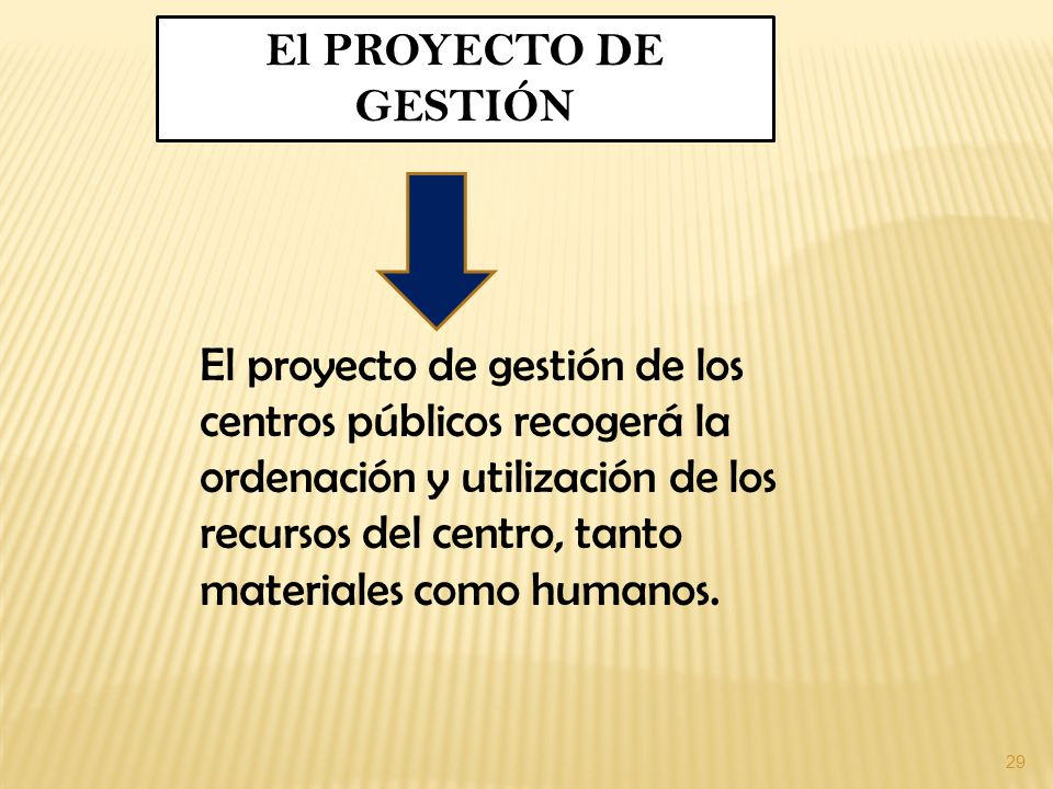 El PROYECTO DE GESTIÓN
