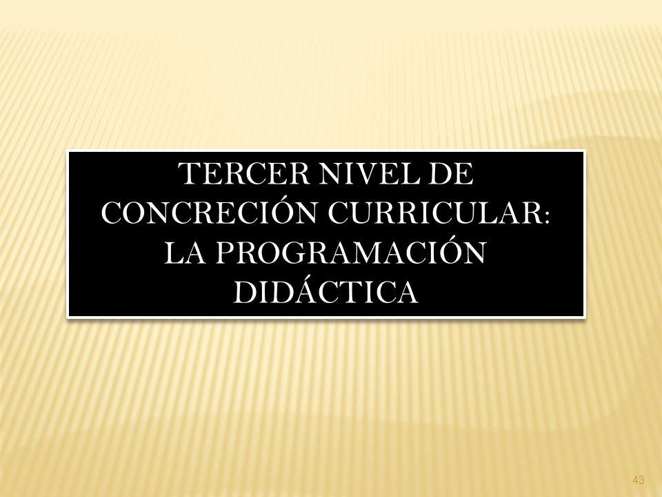 TERCER NIVEL DE CONCRECIÓN CURRICULAR: LA PROGRAMACIÓN DIDÁCTICA