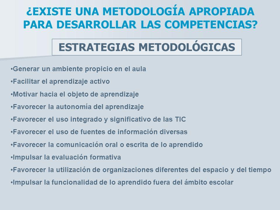 ¿EXISTE UNA METODOLOGÍA APROPIADA PARA DESARROLLAR LAS COMPETENCIAS