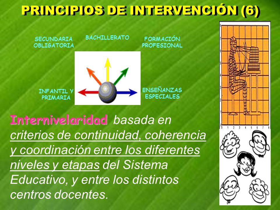 PRINCIPIOS DE INTERVENCIÓN (6)
