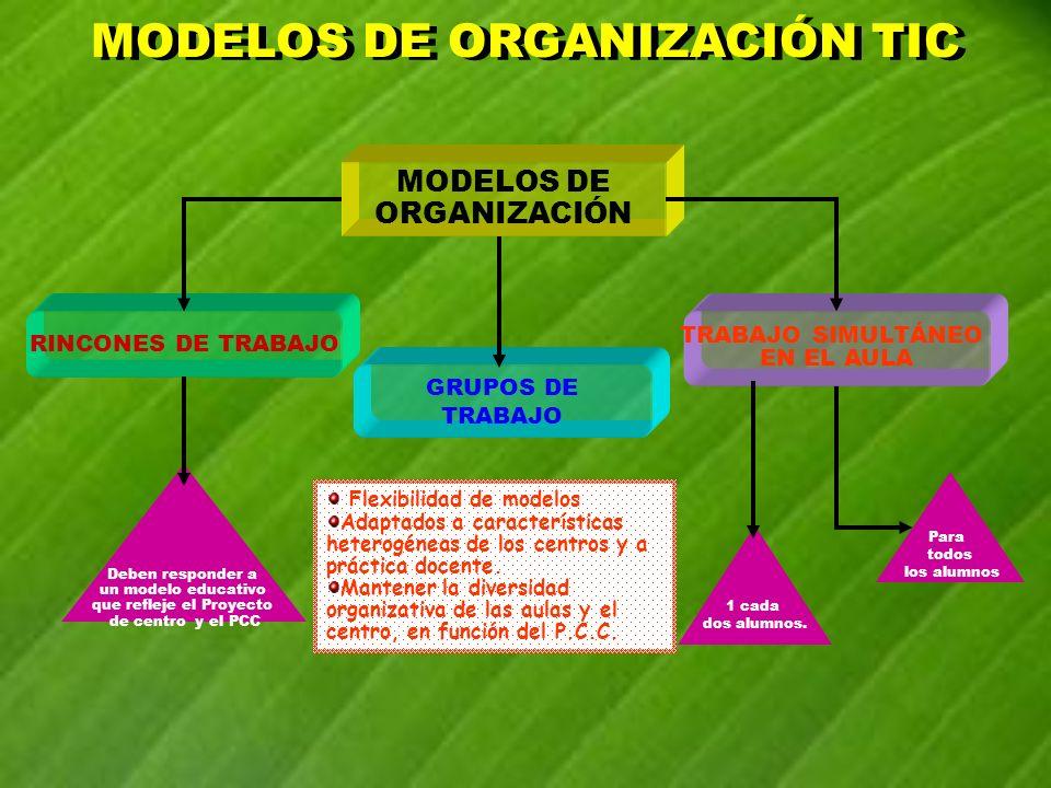 MODELOS DE ORGANIZACIÓN TIC MODELOS DE ORGANIZACIÓN