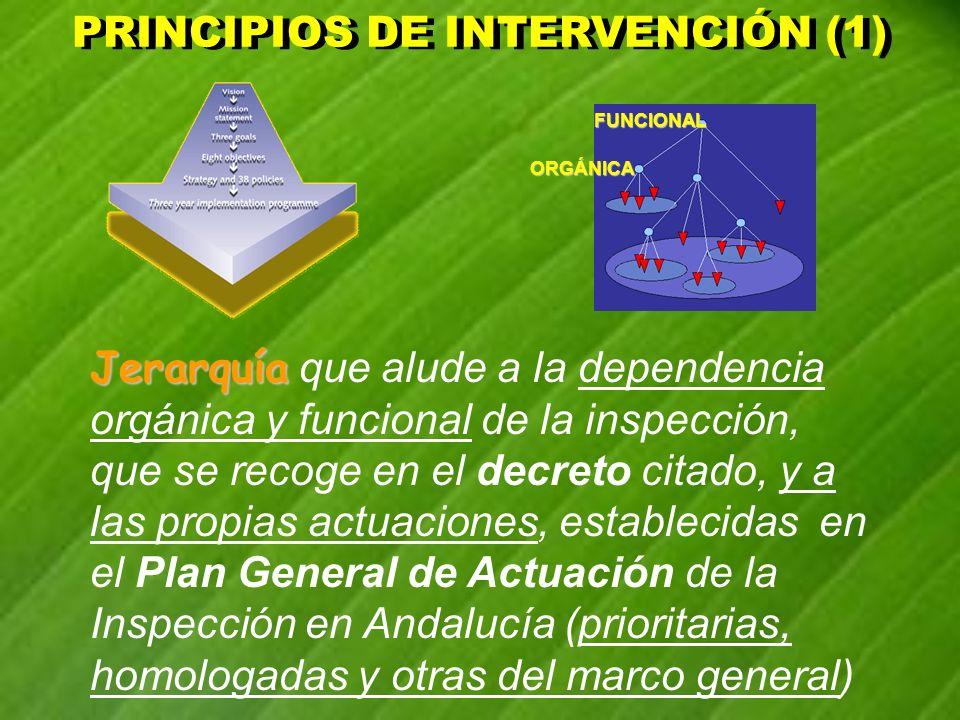 PRINCIPIOS DE INTERVENCIÓN (1)
