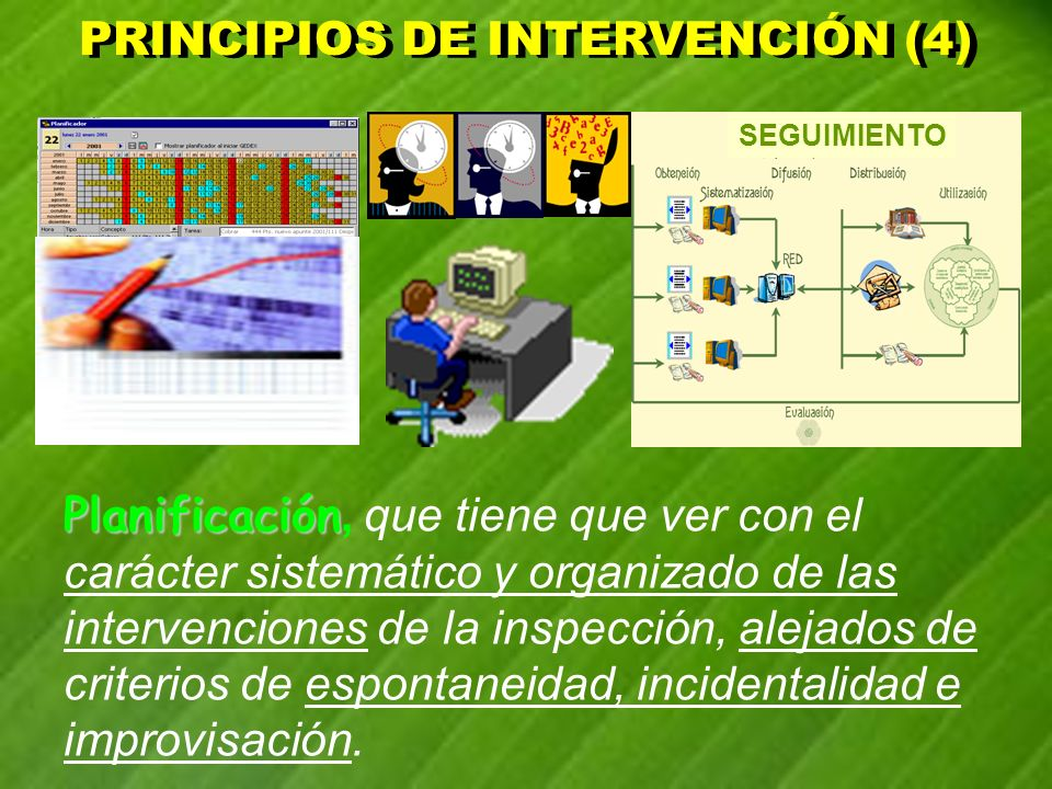 PRINCIPIOS DE INTERVENCIÓN (4)