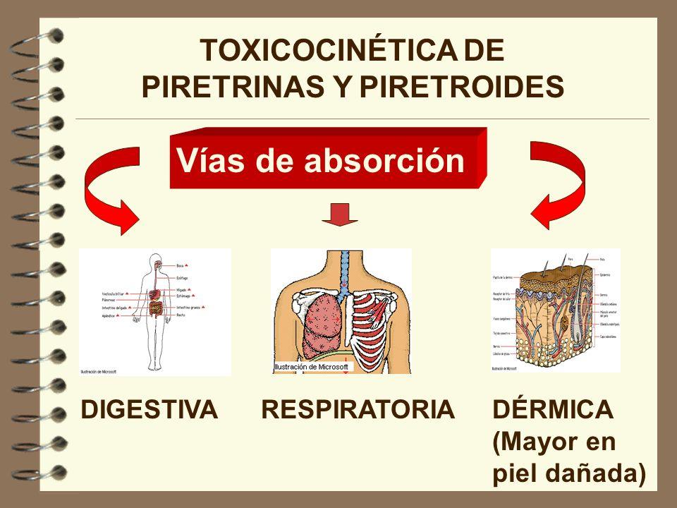 TOXICOCINÉTICA DE PIRETRINAS Y PIRETROIDES