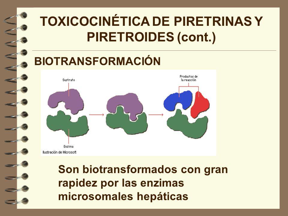 TOXICOCINÉTICA DE PIRETRINAS Y PIRETROIDES (cont.)