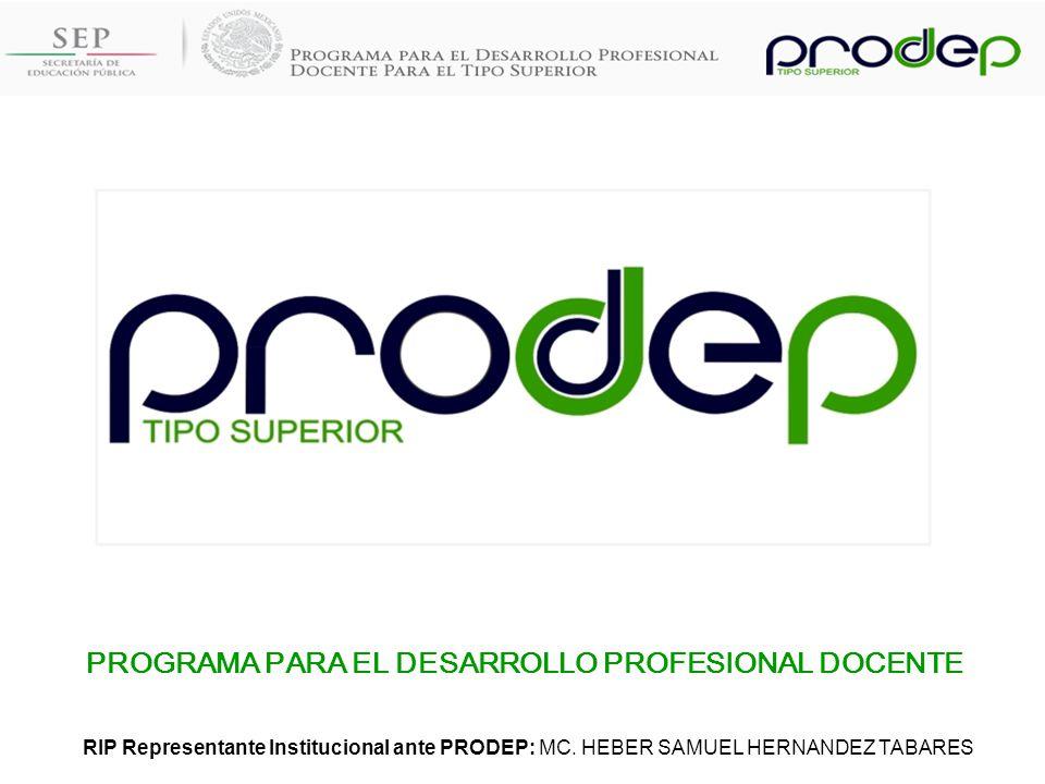 PROGRAMA PARA EL DESARROLLO PROFESIONAL DOCENTE