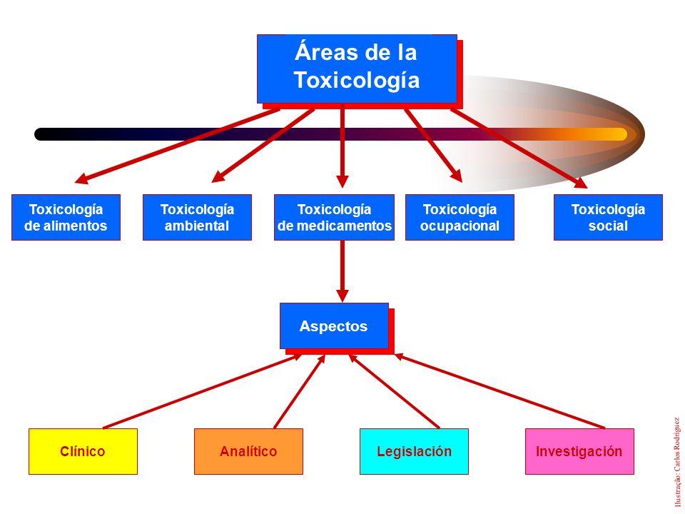 Áreas de la Toxicología