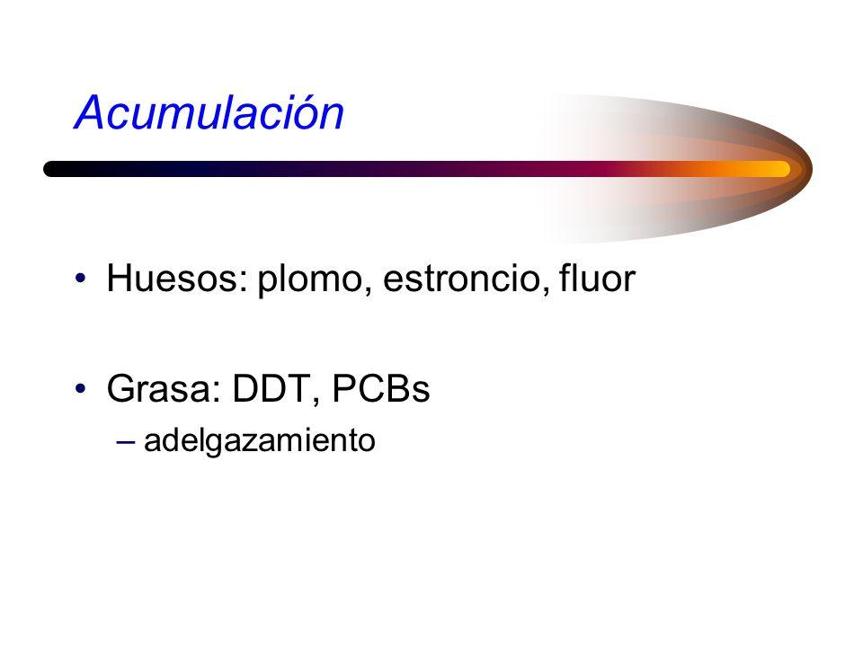 Acumulación Huesos: plomo, estroncio, fluor Grasa: DDT, PCBs