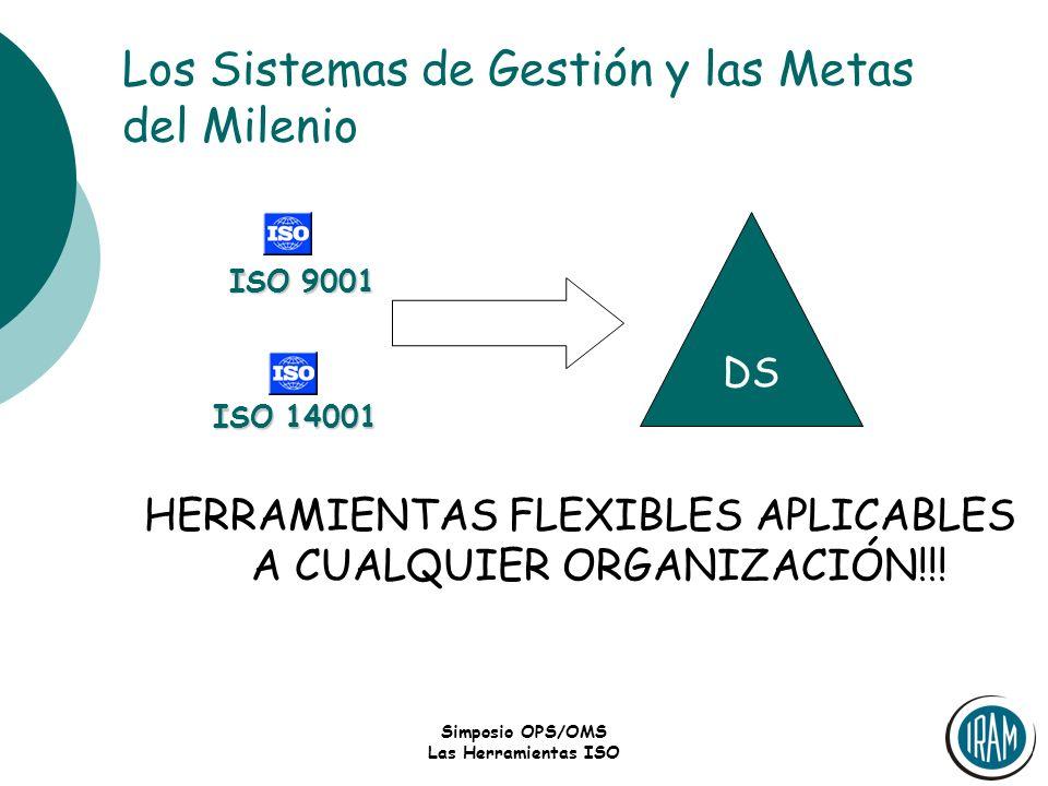 Los Sistemas de Gestión y las Metas del Milenio