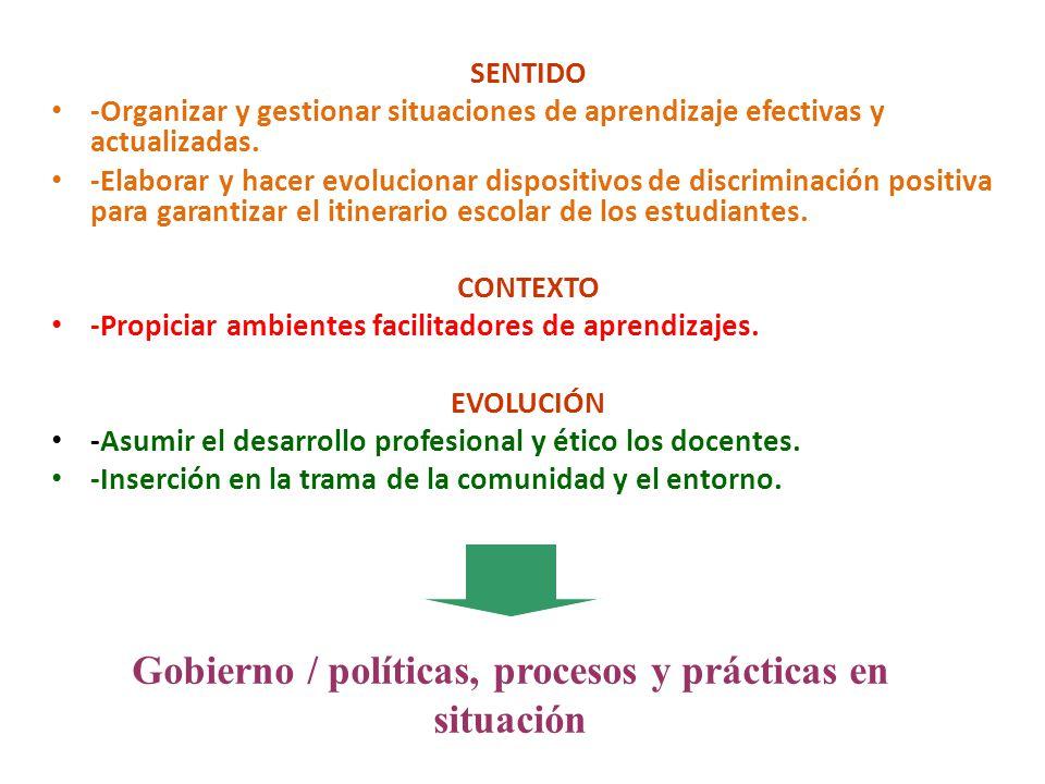 Gobierno / políticas, procesos y prácticas en situación
