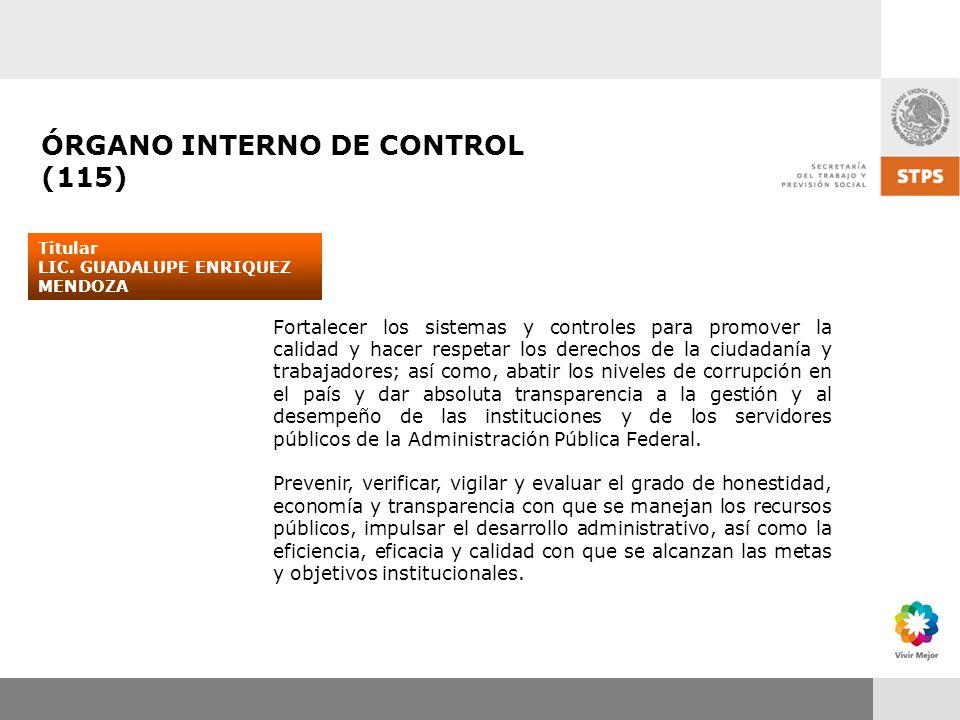 ÓRGANO INTERNO DE CONTROL (115)